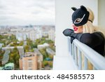 Pretty blonde woman with black cats looks down on balcony in city