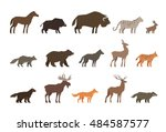 Animals Set Of Colored Icons...