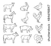 farm animals vector collection. ... | Shutterstock .eps vector #484698847