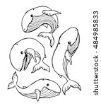 whale set vector on a black... | Shutterstock .eps vector #484985833