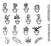 cactus and leaf cartoon drawing ... | Shutterstock .eps vector #485098423