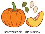 pumpkin with slice and seeds... | Shutterstock .eps vector #485180467