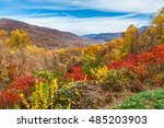 fall forest  great smoky... | Shutterstock . vector #485203903