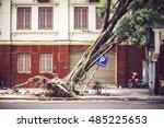 Fallen Tree On Street After...