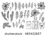hand sketched vector holiday... | Shutterstock .eps vector #485432857