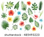 Set of watercolor green leaves and hibiscus flowers isolated on white background.