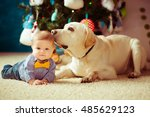 the small baby with dog lie on... | Shutterstock . vector #485629123