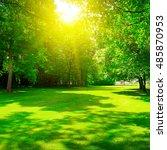 sunrise in summer beautiful park | Shutterstock . vector #485870953