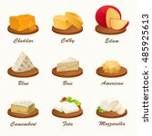 set of different kinds of... | Shutterstock .eps vector #485925613