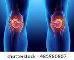 3d illustration of patella  ... | Shutterstock . vector #485980807