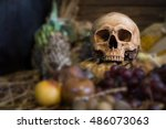 skull with withered and rot... | Shutterstock . vector #486073063