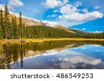 the concept of ecotourism.... | Shutterstock . vector #486549253
