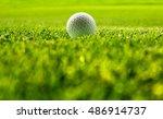 green grass at sunlight with... | Shutterstock . vector #486914737
