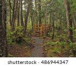 Beaver Lake Trail  Sitka  Alaska
