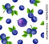fresh ripe blueberries with... | Shutterstock . vector #486962053