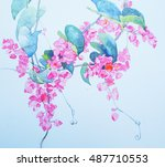 mexican creeper watercolor | Shutterstock . vector #487710553