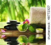 spa treatment | Shutterstock . vector #48772327