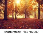 small fog is in autumn in a... | Shutterstock . vector #487789207