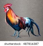 Rooster Red Jungle Fowl....