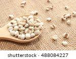 job's tears on wooden spoon...   Shutterstock . vector #488084227