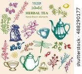 herbal tea collection hand... | Shutterstock .eps vector #488290177