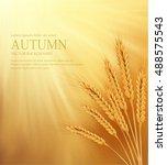 vector orange background with... | Shutterstock .eps vector #488575543