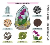 mini garden in jar. geometric...   Shutterstock .eps vector #488594023