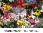 open air flower market in... | Shutterstock . vector #488735857