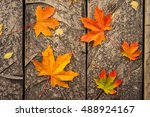 Autumn Maple Leaf On Wooden...