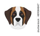 saint bernard dog isolated on... | Shutterstock .eps vector #489084847