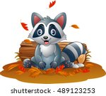 cartoon raccoon in the autumn... | Shutterstock .eps vector #489123253