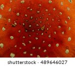 abstract texture of the cap