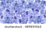 flowers backgrounds | Shutterstock . vector #489854563