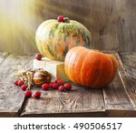 pumpkins  melon and red berries ... | Shutterstock . vector #490506517