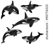 set of cartoon killer whales... | Shutterstock . vector #490776223