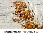 maple leaves sidewalk | Shutterstock . vector #490989517