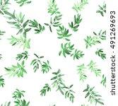 seamless pattern green leaves... | Shutterstock . vector #491269693