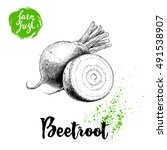 hand drawn beet root with... | Shutterstock .eps vector #491538907