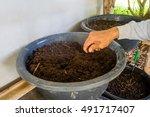 hand soil. | Shutterstock . vector #491717407