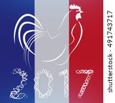 cock new year  flag france   Shutterstock .eps vector #491743717