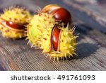 Chestnuts  Ripe Chestnuts On A...