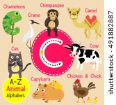 Cute Children Zoo Alphabet C...