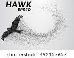 Hawk Of The Particles. The...