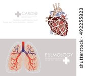 human heart and lungs icon.... | Shutterstock .eps vector #492255823