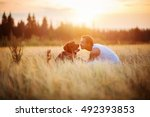young man with his dog in field ... | Shutterstock . vector #492393853