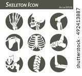 Skeleton Icon  Hand  Finger  ...