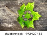 Green Maple Leaf With Recycle...