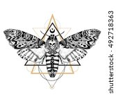 detailed dead head moth in... | Shutterstock .eps vector #492718363