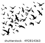 flying birds flock vector... | Shutterstock .eps vector #492814363