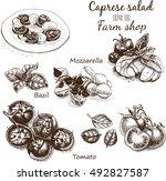 vector illustration sketch  ... | Shutterstock .eps vector #492827587